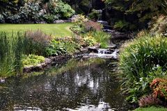 Creek in Hyde Park, London. Amazing view of a creek in the famous Hyde Park in London Royalty Free Stock Image