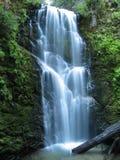 creek jagodowi falls Obraz Royalty Free
