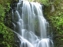creek jagodowi falls Fotografia Stock