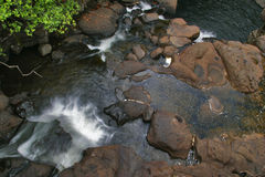 Creek in jungle of Hawaii Royalty Free Stock Photos