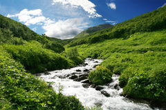 Creek on Kamchatka Royalty Free Stock Photos