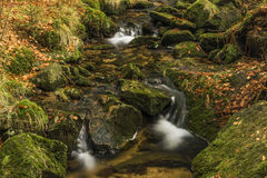 Creek Kamenice in Jizerske hory mountains Stock Photography