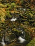 Creek Kamenice in Jizerske hory mountains Royalty Free Stock Image