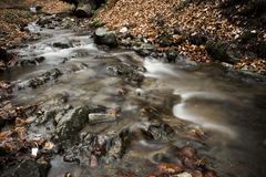 A Creek Royalty Free Stock Image