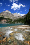 Creek at Lake O'Hara Stock Image