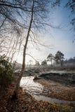 Creek landscape royalty free stock photo