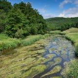 Creek, Landscape of Eifel, Germany Stock Photo