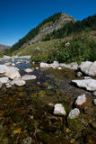Creek in Ligurian Alps Royalty Free Stock Images