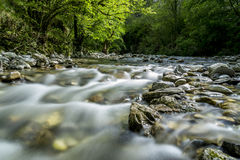 Gelbe fliegen. Creek with long exposure in the garfagnana Royalty Free Stock Photo