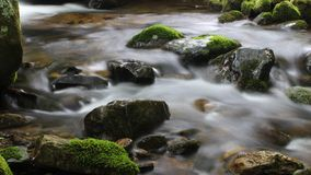 Creek Long Exposure. Long exposure (4 seconds) of a creek with moss-covered rocks Royalty Free Stock Image