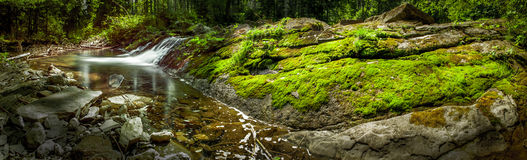 Creek, moss and rocks Royalty Free Stock Photo