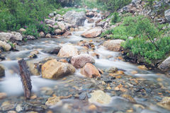 Creek at Mount Edith Cavell Royalty Free Stock Image