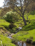 Creek, Mount Pleasant, South Australia. A small creek in Mount Pleasant South Australia, headin towards Birwood. The creek is directly off of the main road Stock Images