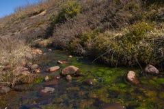 Creek on the Mount Stock Photos