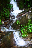 Creek in mountain Royalty Free Stock Photography