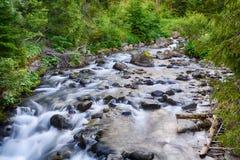 Creek in mountain Stock Photo