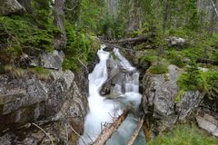 Creek in mountain Stock Photography