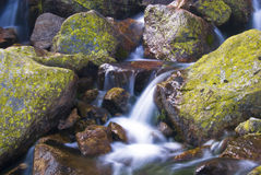 Creek in the mountains Stock Photos