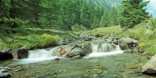 Creek in the mountains Royalty Free Stock Photo