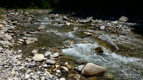 Creek in the mountains. Cold clear stream between rocks. stock video