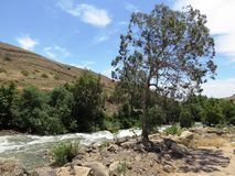 Creek in the mountains. Jordan River Royalty Free Stock Photos