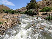 Creek in the mountains. Jordan River Royalty Free Stock Images