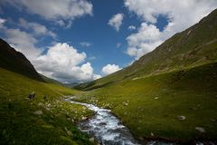 Creek in mountains Stock Photography