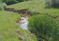 The Creek na ravina Fotografia de Stock Royalty Free