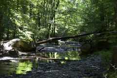 Creek in a nature preserve. Creek in Shale Hollow Preserve in Ohio Stock Image