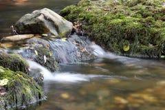 Creek nature scene Stock Photo