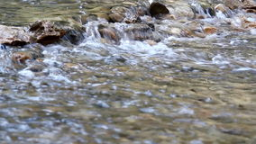 Creek nature scene stock video footage