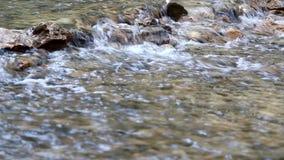 Creek nature scene stock video footage
