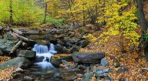 Creek panorama Stock Photo