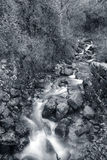 Creek from Peneda Geres National Park stock photography