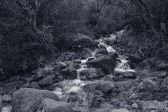 Creek from Peneda Geres National Park royalty free stock image