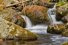 Creek Stock Image