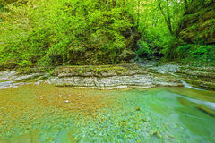 Creek with pure water. Royalty Free Stock Photo