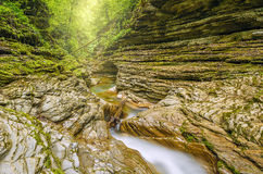 Creek with pure water. Royalty Free Stock Photography
