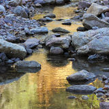 A Creek Reflects the Greens and Golds of Fall Royalty Free Stock Image