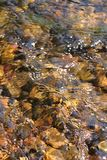 Creek Riffle background Stock Photo