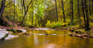 A creek at Rocks State Park, Maryland. Stock Images