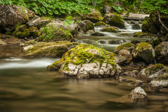 Creek, rocks and vegetation Stock Photo