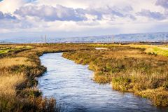Free Creek Running Among The Marshes Of San Francisco Bay, Mountain View, California Stock Image - 139786761
