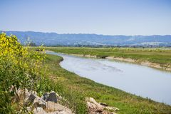 Creek running among the marshes of San Francisco bay, Mountain View, California stock images