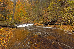 Creek Running Thru the Mountains In Fall Royalty Free Stock Images