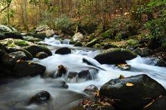 Creek running thru Smoky Mountain National Park. A slow moving creek in fall running thru Smoky Mountain National Park Stock Photos