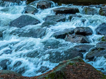 Creek with running water Stock Photos