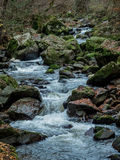 Creek with running water Stock Images