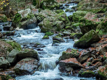 Creek with running water Royalty Free Stock Image