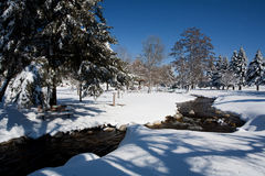 Creek runs through park in winter. Stock Photography